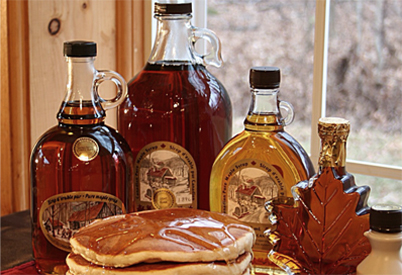 Maple Syrup Tour